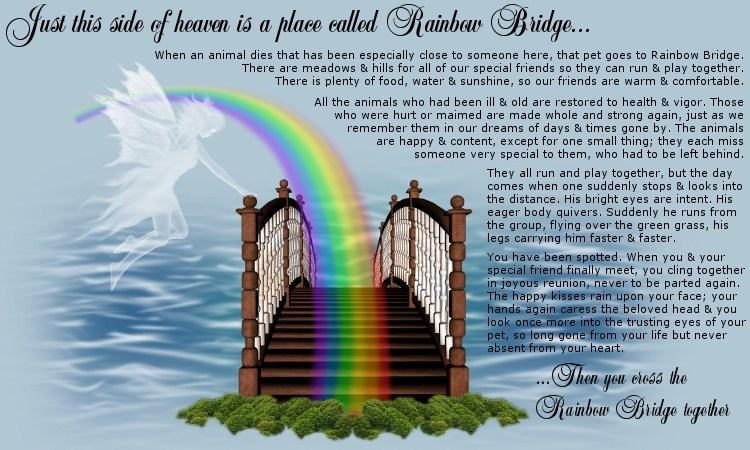 http://www.ourheavenlyyorkies.com/Rainbow_Bridge%20(2).jpg